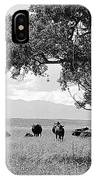 Cattle Ranch In Summer IPhone Case