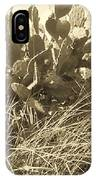 Catus 3 IPhone Case