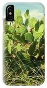Catus 4 IPhone Case