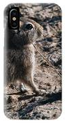 Cavy IPhone Case
