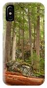 Cedar Logs At Garibaldi IPhone Case