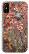Cedar Waxwing Foraging IPhone Case