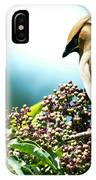 Cedar Waxwing Pose IPhone Case