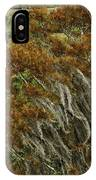 Cedars In The Fall IPhone Case