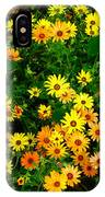 Celebration Of Yellows And Oranges Study 3 IPhone Case