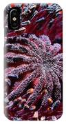 Center Of Attention  IPhone Case