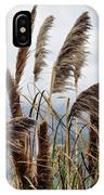 Central Coast Pampas Grass IPhone Case