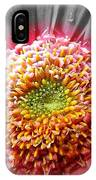 Centre Of Beauty IPhone Case