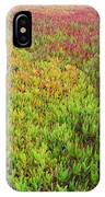 Changing Landscape I IPhone Case