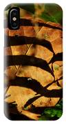 Chaos Theory IPhone Case