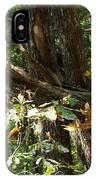 Chattahoochee River Trails IPhone Case