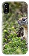 Checking Things Out IPhone Case