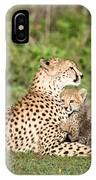 Cheetah Cub Acinonyx Jubatus Playing IPhone Case