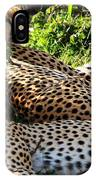Cheetah - Masai Mara - Kenya IPhone Case