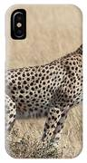 Cheetah Ready For The Off IPhone Case