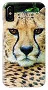 Cheetah Stare L IPhone Case