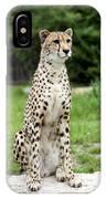 Cheetah's 01 IPhone Case