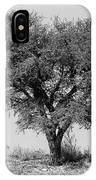 Cheetahs And A Tree IPhone Case