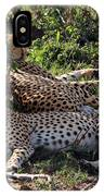 Cheetahs Of The Masai Mara IPhone Case