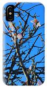 Cherry Blossom II IPhone Case