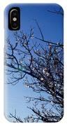Cherry Blossom IIi IPhone Case