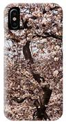 Cherry Blossom Trees In Potomac Park IPhone Case