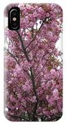 Cherry Blossoms 2 IPhone Case
