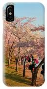 Cherry Blossoms 2013 - 007 IPhone Case