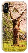 Cherry Blossoms 2013 - 009 IPhone Case