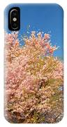 Cherry Blossoms 2013 - 016 IPhone Case