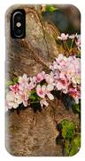 Cherry Blossoms 2013 - 064 IPhone Case
