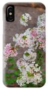 Cherry Blossoms 2013 - 067 IPhone Case