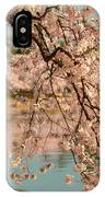 Cherry Blossoms 2013 - 079 IPhone Case