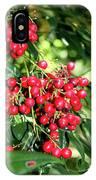 Cherry Laurel  IPhone Case