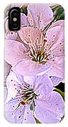 Cherry Tree Blossoms IPhone Case