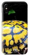 Chesapeake Box Turtle IPhone Case