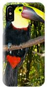 Chestnut Mandibled Toucan IPhone Case