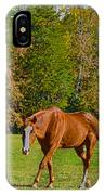 Chestnut Red Horse IPhone Case