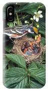 Chestnut-sided Warbler At Nest IPhone Case