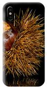 Chestnuts IPhone Case