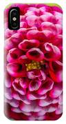 Chick A Dee Dahlia IPhone Case