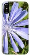 Chicory IPhone Case
