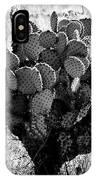 Chihuahua Desert Cactus Bw IPhone Case