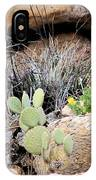 Chihuahuan  Desert Cacti IPhone Case