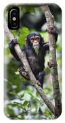 Chimpanzee Baby Eating A Leaf Tanzania IPhone Case