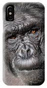 Chimpanzee Portrait IPhone Case