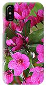 Chinese Apple Blossoms IPhone Case