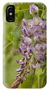 Chinese Wisteria IPhone Case
