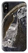 Chipmunk   #2155 IPhone Case