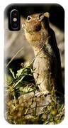 Chipmunk   #9594 IPhone Case